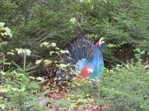 Bergwalderlebnispfad-ettal-tierarten_outdooractive